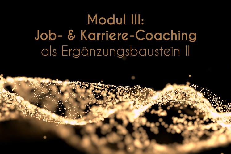 YOLO Jobcoaching Psychologicum Berlin 005