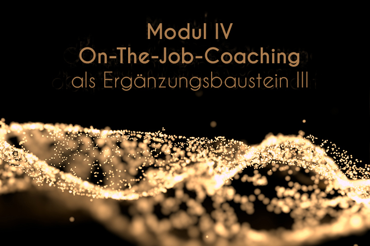 Modul 4 - On the job coaching